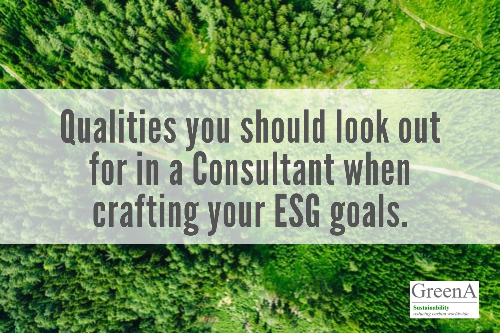 Qualities you should be looking out for in a Consultant to Craft your ESG goals
